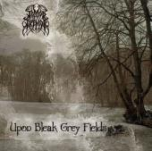 Upon Bleak Grey Fields Cover
