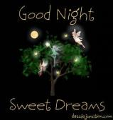 Good night. Sleep tight. Sweet dreams.