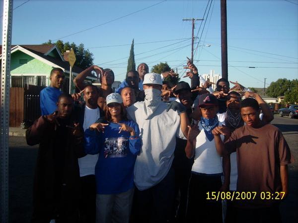 the crips street gang essay Essay on general prosperity in the united there are several types of gangs in the usa, such as street gangs (gangs in the usa) anti-gang initiatives and.
