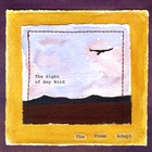 The Sight of Any Bird [Explicit]