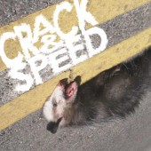 Photo of crack&speed
