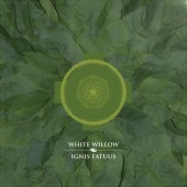 Photo of White Willow